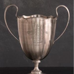 vintage grand champion bull trophy