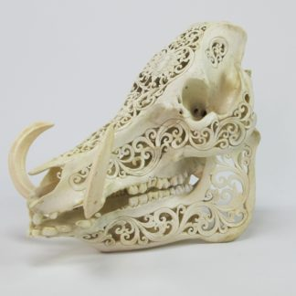 Artisan Carved Skull (Medium)