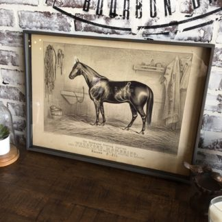 Famous Race Horse Framed Print- Woodford Mambrino