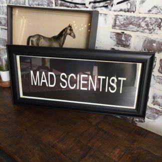 MAD SCIENTIST Framed Print
