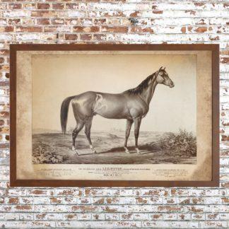 Distressed Lexington Racehorse Print (Framed)